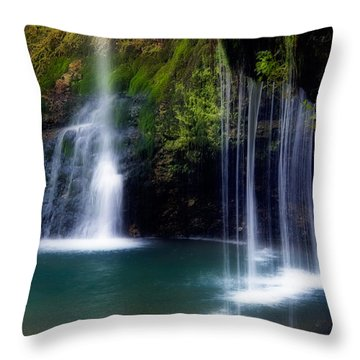 Natural Falls Throw Pillow by Lana Trussell