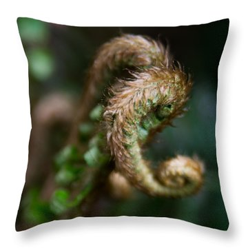 Throw Pillow featuring the photograph Natural Fiddlehead by Erin Kohlenberg
