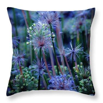 Natural Fireworks 4791 H_2 Throw Pillow