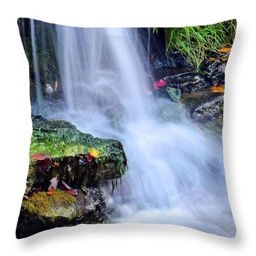 Throw Pillow featuring the photograph Natural Flowing Water by Frozen in Time Fine Art Photography