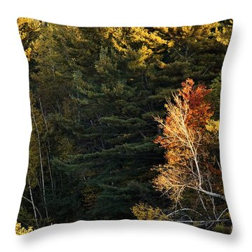 natural Framing Throw Pillow by Aimelle
