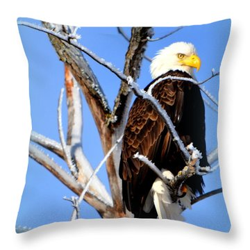 Natural Freedom Throw Pillow