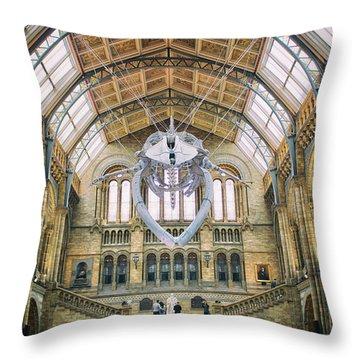 Natural History Museum Throw Pillows
