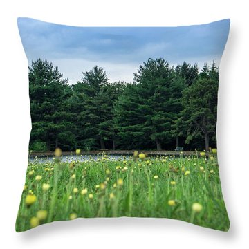 Evergreen Lake - A Groundhog View Throw Pillow