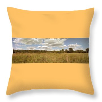 Natural Meadow Landscape Panorama. Throw Pillow