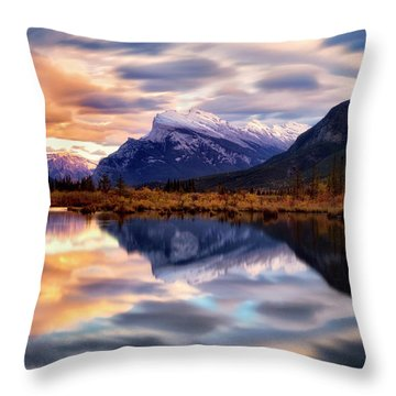Natural Mirror Throw Pillow by Nicki Frates