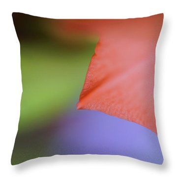 Natural Primary Colors Throw Pillow