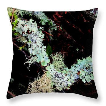 Natural Still Life #2 Throw Pillow