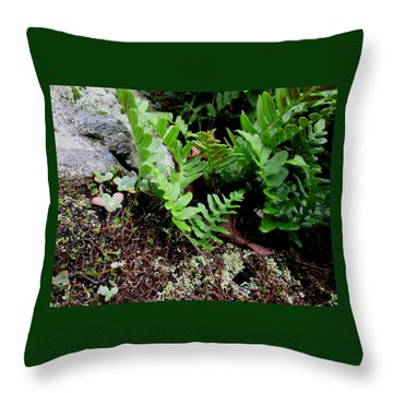 Natural Still Life #4 Throw Pillow