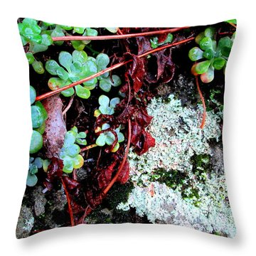 Natural Still Life #5 Throw Pillow