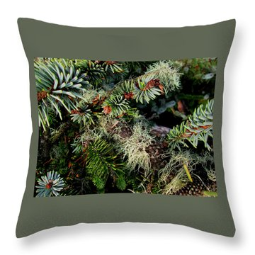 Natural Still Life #7 Throw Pillow