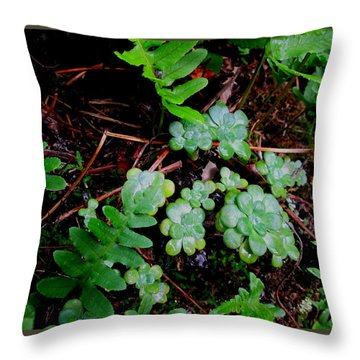 Natural Still Life #8 Throw Pillow