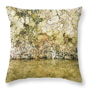 Throw Pillow featuring the photograph Natural Stone Background by Torbjorn Swenelius