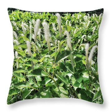 Natural Vision Throw Pillow