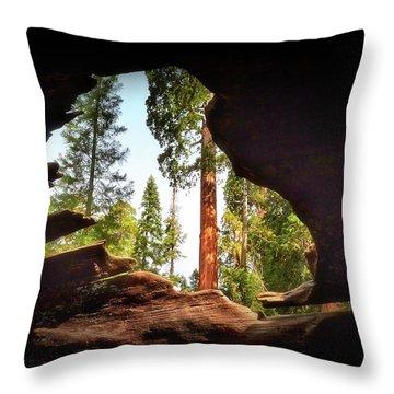 Natural Window Throw Pillow