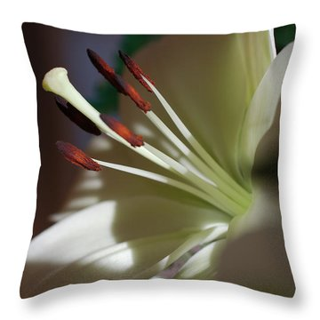 Naturally Elegant Throw Pillow