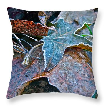 Naturally Washington Throw Pillow by Gwyn Newcombe