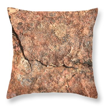 Nature Abstract - Cracked Throw Pillow by Carol Groenen