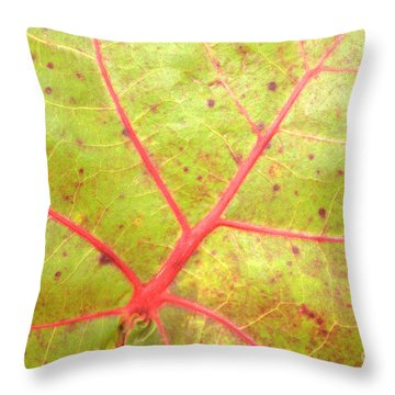 Nature Abstract Sea Grape Leaf Throw Pillow by Carol Groenen
