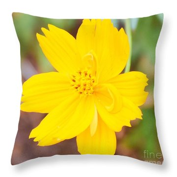 Throw Pillow featuring the photograph Nature Colorful Flower Gifts - Yellow by Ray Shrewsberry
