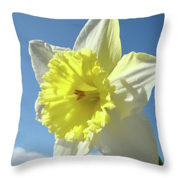 Nature Daffodil Flowers Art Prints Spring Nature Art Throw Pillow by Baslee Troutman