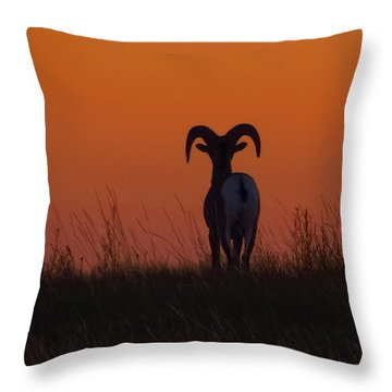 Nature Embracing Nature Throw Pillow