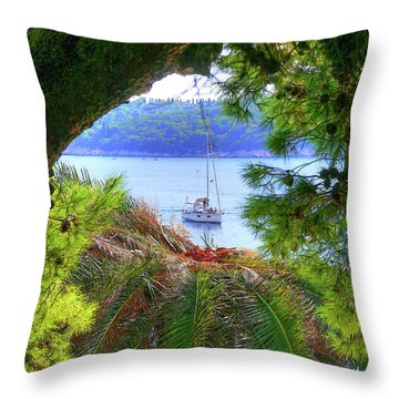 Nature Framed Boat Throw Pillow