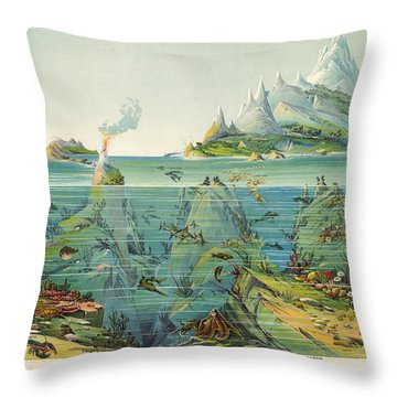 Nature - In - Descending - Regions - Geological Chart Throw Pillow