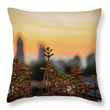 Nature In The City Throw Pillow
