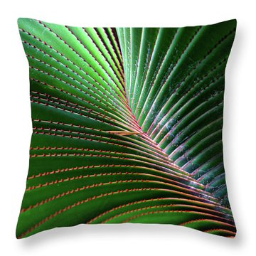 Nature Light And Line Throw Pillow by Jae Mishra
