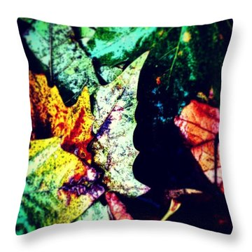 #nature #tagsforlikes #summer Throw Pillow by Jason Michael Roust