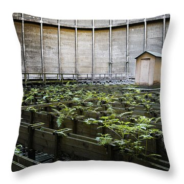 Throw Pillow featuring the photograph Nature Takes Back - Inside Cooling Tower by Dirk Ercken
