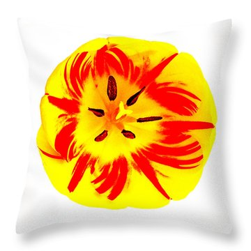 Throw Pillow featuring the photograph Nature The Abstract Painter by Roger Bester