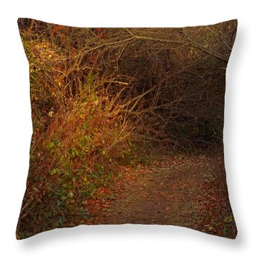 Nature Trail 2 Throw Pillow