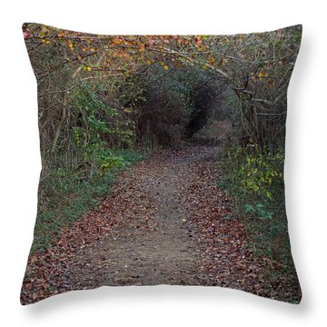 Nature Trail 3 Throw Pillow