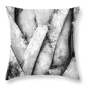 Throw Pillow featuring the photograph Natures Abstract Black And White by Julie Palencia