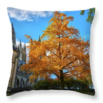 Throw Pillow featuring the photograph Natures Architecture by Mitch Cat