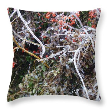 Throw Pillow featuring the photograph Natures Art  by Kristine Nora