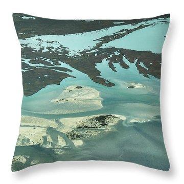 Natures Art On Barnegat Bay Throw Pillow