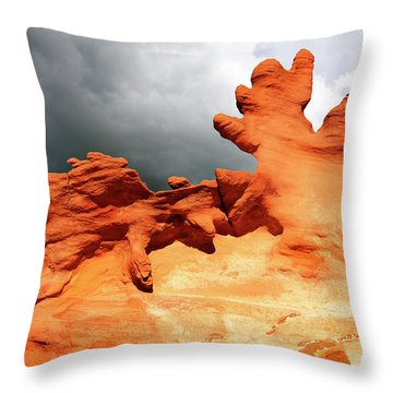 Throw Pillow featuring the photograph Nature's Artistry Nevada 2 by Bob Christopher