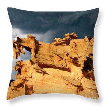 Throw Pillow featuring the photograph Nature's Artistry Nevada 3 by Bob Christopher