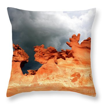 Throw Pillow featuring the photograph Nature's Artistry Nevada by Bob Christopher