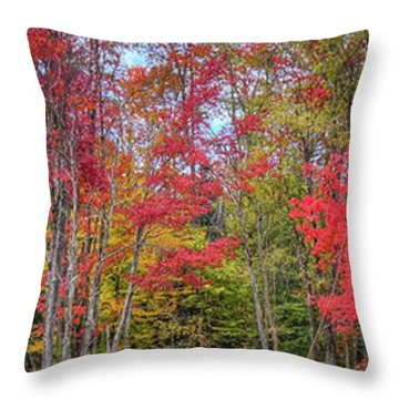Throw Pillow featuring the photograph Natures Autumn Palette by David Patterson