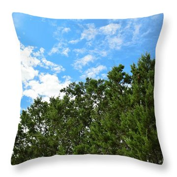 Throw Pillow featuring the photograph Nature's Beauty - Central Texas by Ray Shrewsberry