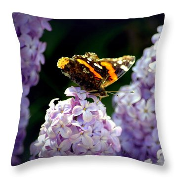 Nature's Beauty Throw Pillow by Clarice  Lakota