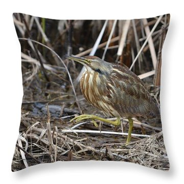 Natures Blend  Throw Pillow by Kathy Gibbons