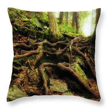 Nature's Cauldron Throw Pillow