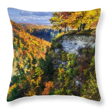 Natures Colors Throw Pillow