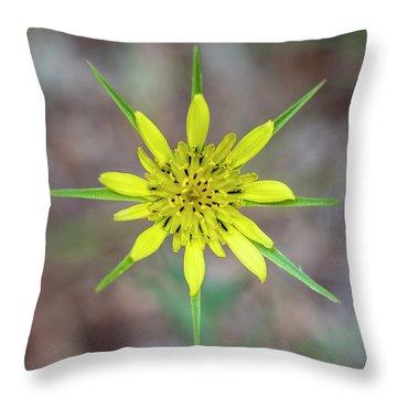 Nature's Compass Throw Pillow