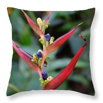 Nature's Creation Throw Pillow